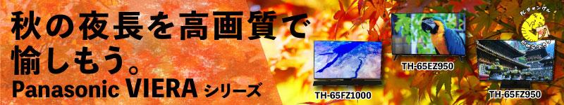 秋の夜長に有機ELテレビ